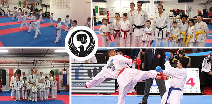 about stadium karate club
