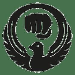 stadium karate logo